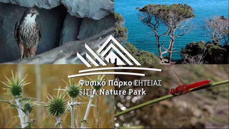Φυσικό πάρκο Σητείας