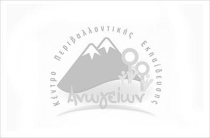 kpe-anogion